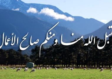 Eid-ul-Adhaa 2016 New Zealand